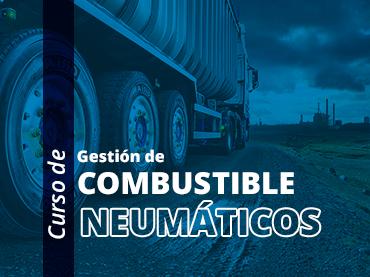 Gestión del Combustible y Neumáticos   Inicio: 16 de Setiembre